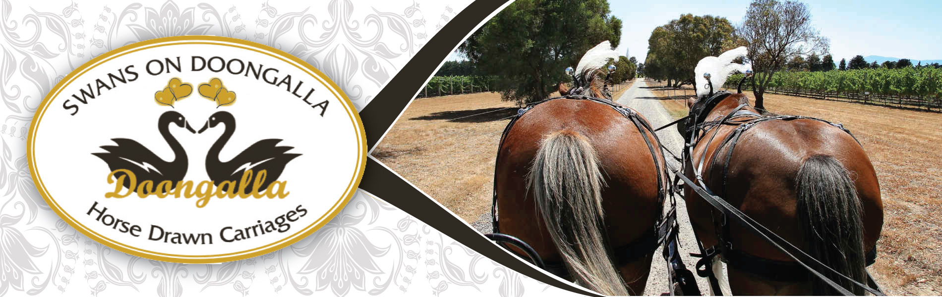 Horse Drawn Carriage Winery Tours