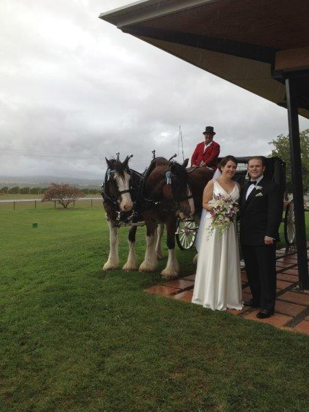 Balgownie Wedding Reception Horse Drawn Carriage