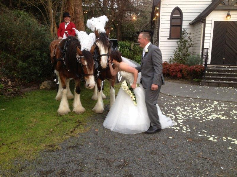 Chateau Wyuna Wedding Reception Horse Drawn Carriage