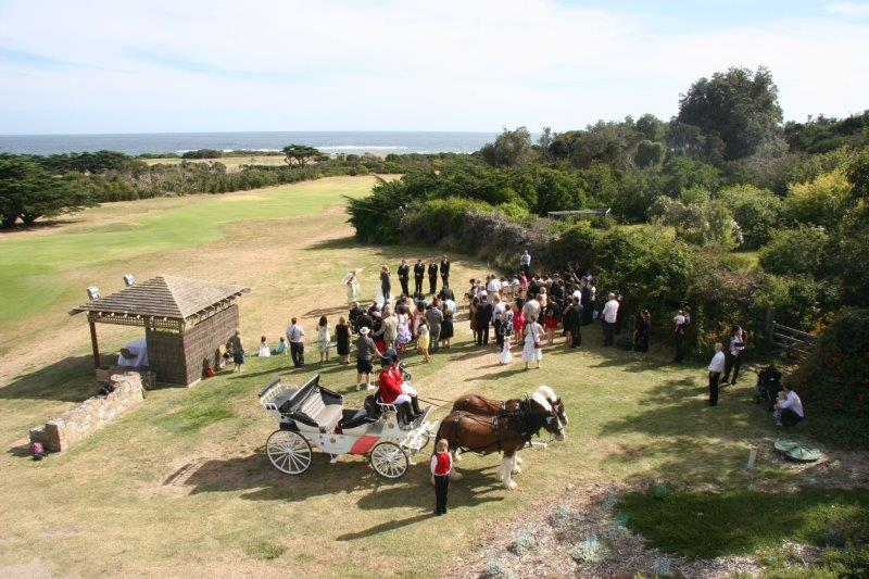 Flinders Golf Course Wedding Horse Drawn Carriage