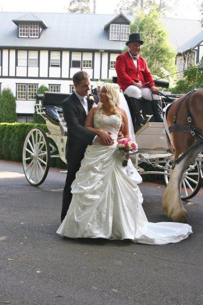 Marybrooke Weddings Horse Drawn Carriage