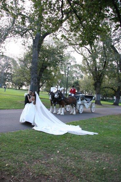 Melbourne Church Weddings Horse Drawn Carriage
