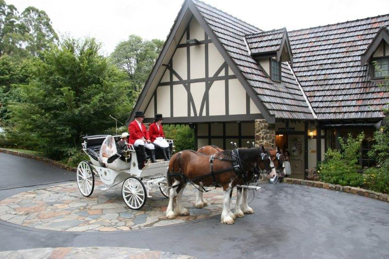 Tatra Weddings Horse Drawn Carriage