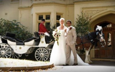 Morning Star Estate Weddings Horse Drawn Carriage