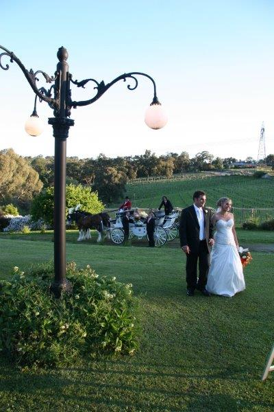 All Smiles Wedding Reception Horse Drawn Carriage