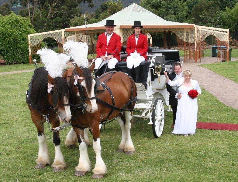 Aroretum Wedding Reception Horse Drawn Carriages