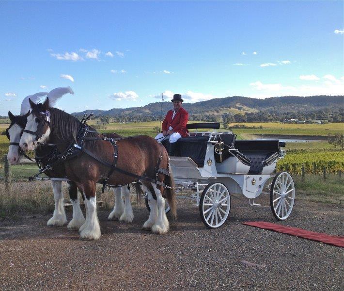 Balgownie Wedding Reception Horse Drawn Carriage