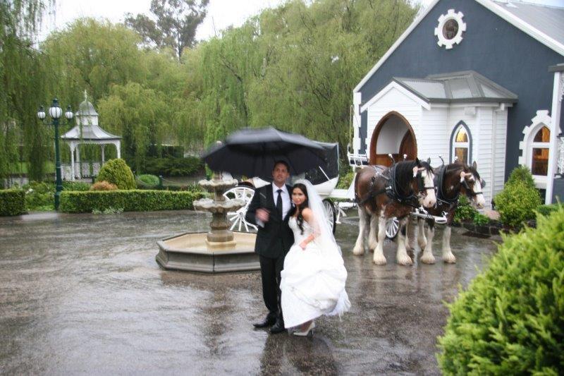 Ballara Estate Wedding Reception Horse Drawn Carriage