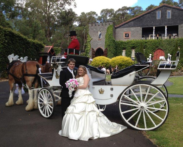 Camelot Castle Wedding Reception Horse Drawn Carriage