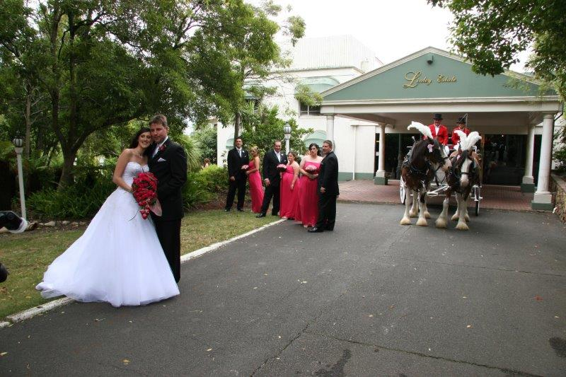 Linley Estate Weddings Horse Drawn Carriage