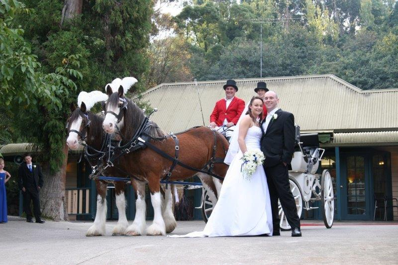 Nathania Springs Weddings Horse Drawn Carriage