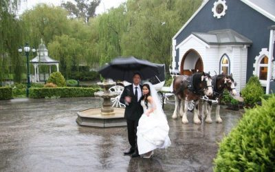 Ballara Receptions Horse Drawn Carriage