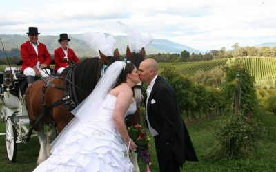 Killara Estate Wedding Horse Drawn Carriage